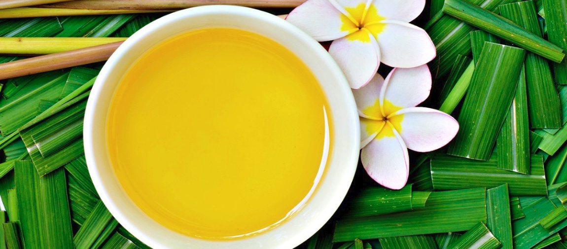 Conheça o óleo essencial de Citronela