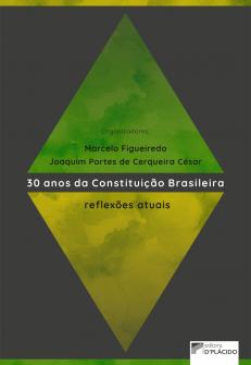 Imagem - 30 anos da constituição brasileira: reflexões atuais