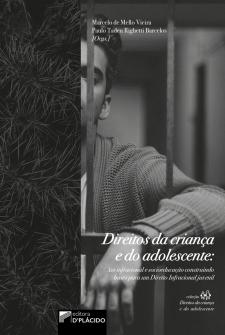 Imagem - Direitos da criança e do adolescente: ato infracional e socioeducação construindo bases para um direito Infracional juvenil
