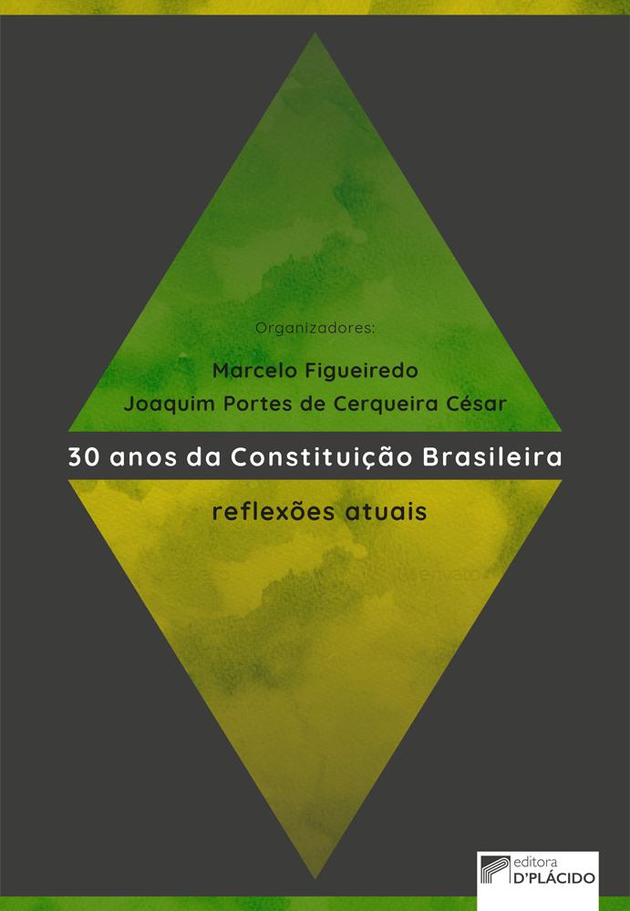 30 anos da constituição brasileira: reflexões atuais