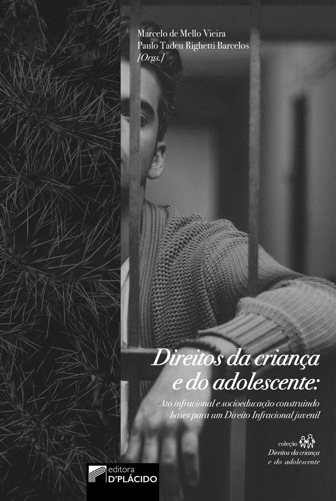 Direitos da criança e do adolescente: ato infracional e socioeducação construindo bases para um direito Infracional juvenil