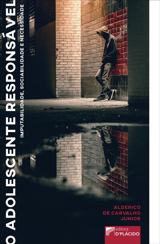 O Adolescente Responsável: Imputabilidade, sociabilidade e necessidade