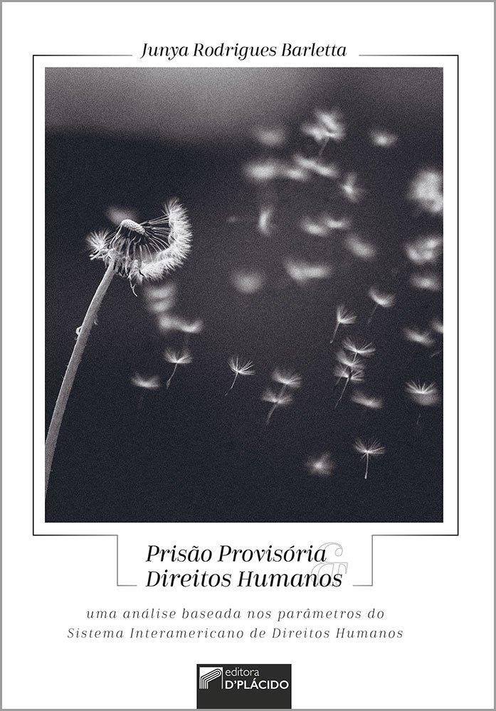 Prisão provisória e direitos humanos: uma análise baseada nos parâmetros do sistema interamericano de direitos humanos