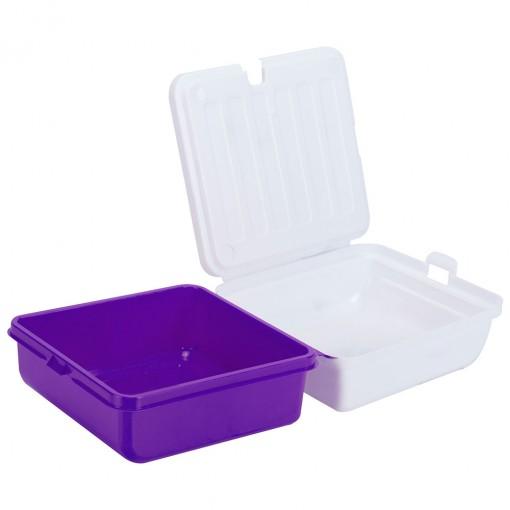 Sanduicheira de Plástico com Tampa Fixa, Trava e 2 Compartimentos Frozen