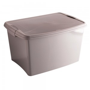 Imagem do produto - Caixa de Plástico Retangular Organizadora 46 L com Tampa e Travas Laterais Gran Box - Fendi