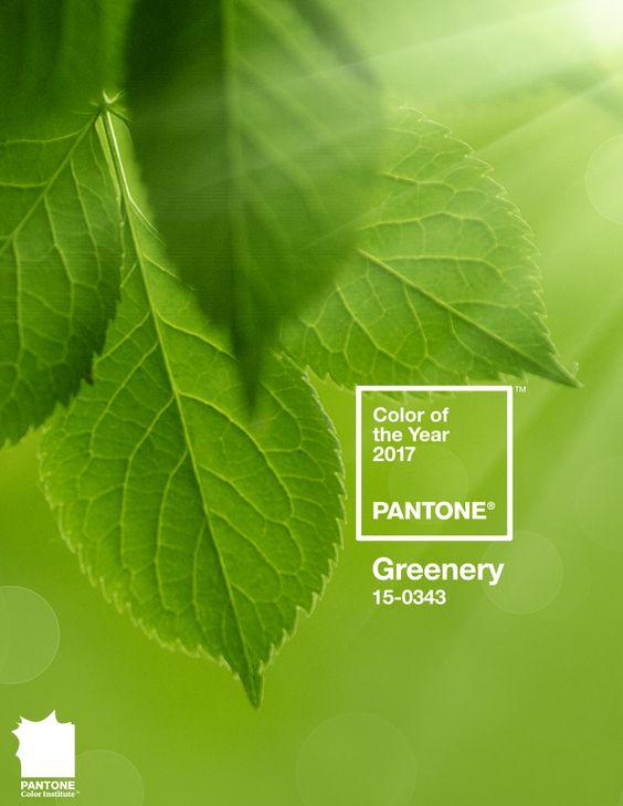 Imagem - A cor de 2017: Greenery