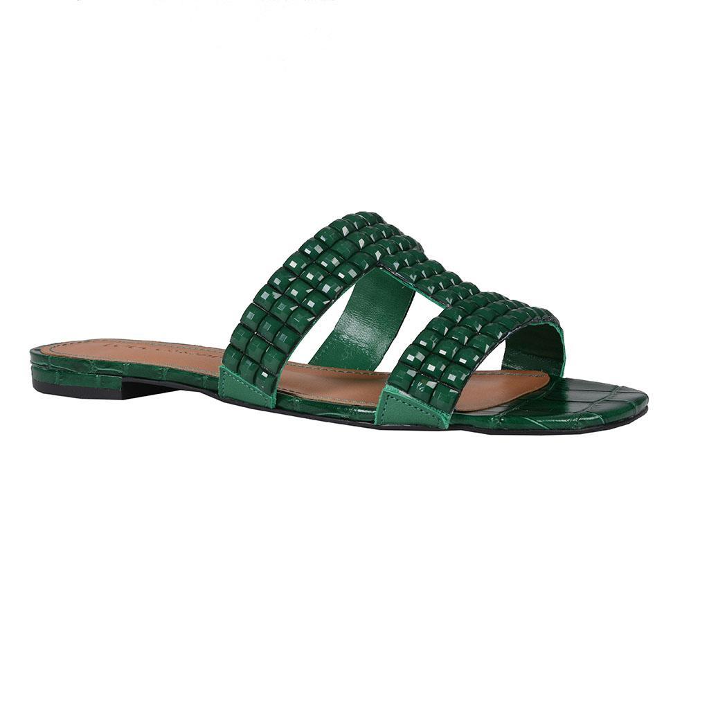 Imagem - Slide croco verde I19