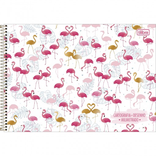 Caderno de Cartografia e Desenho Milimetrado Espiral Capa Dura Aloha 80 Folhas (Pacote com 4 unidades) - Sortido