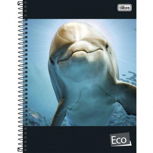 Caderno Espiral Capa Dura Universitário 10 Matérias Eco 200 Folhas (Pacote com 4 unidades) - Sortido