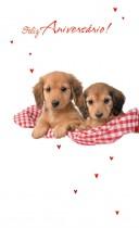 Imagem - Cartão Magic Moments Aniversário Cachorros pequenique- Grafon's