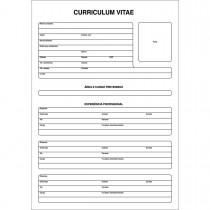 Imagem - Curriculum Vitae Folha Única - 50 Folhas (Pacote com 5 unidades)