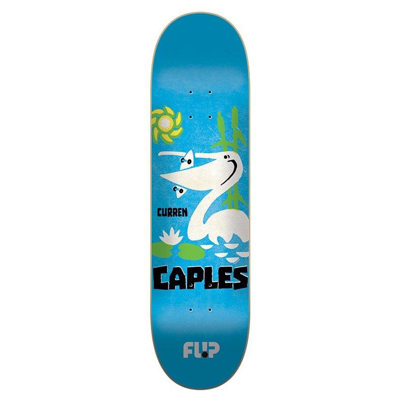 SHAPE FLIP CAPLES VINTAGE 8.0