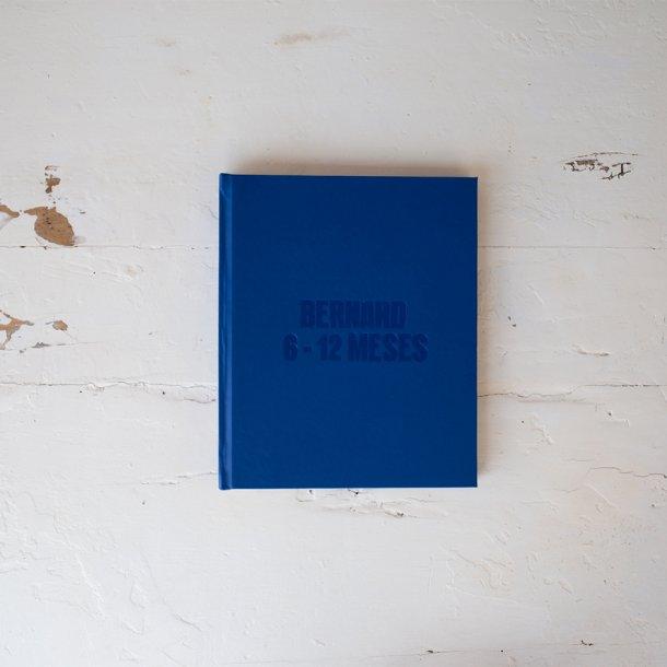 álbum de fotos m personalizado -  mim papelaria