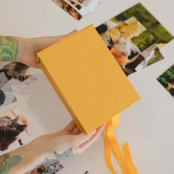 caixa para fotos p personalizável - coleção amor de pet - mim papelaria