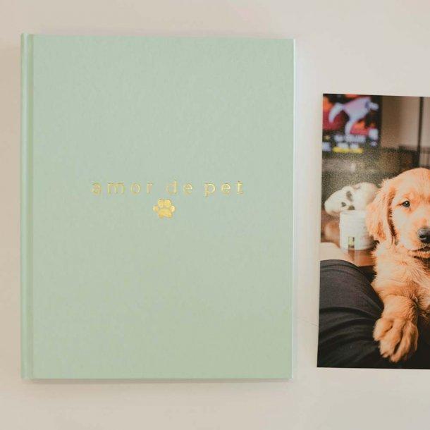 livro para fotos m verde menta - coleção amor de pet - mim papelaria
