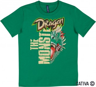 Camiseta Meia Malha Infantil Masculino - Cativa