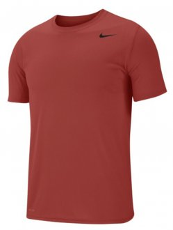 Camiseta Nike Legend 2.0 718833-642