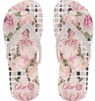 Chinelo Colorbe 121 3572