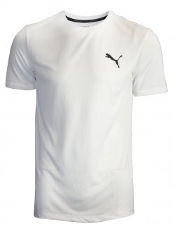 Imagem - Camiseta Masculina Puma Active Tee  cód: 050355