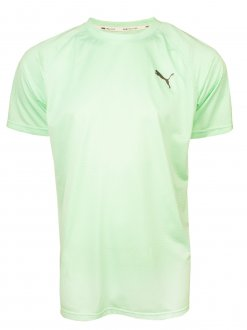 Imagem - Camiseta Puma Tech Masculina cód: 055367