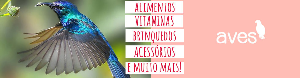 Banner Aves