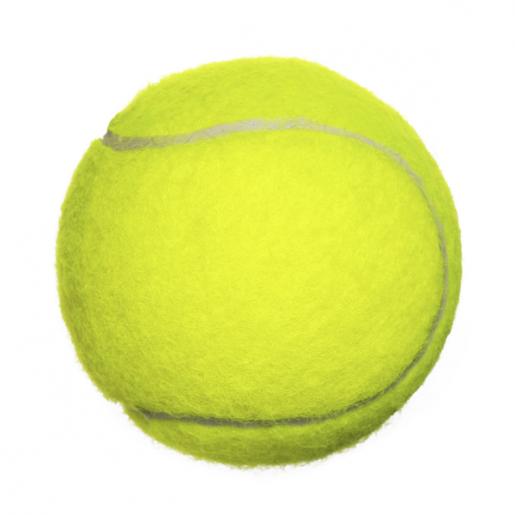 Bola de Tênis para Cães