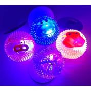 Brinquedo Bola com Luz Led Pisca-Pisca Animals Light Bom Amigo