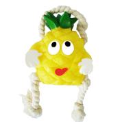 Brinquedo Mordedor Vinil Frutas Abacaxi com corda