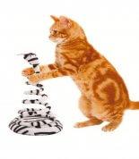 Brinquedo para Gatos João Bobo Chalesco Zebra
