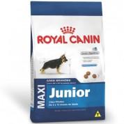 Imagem - Ração Royal Canin Maxi Junior 15kg