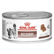 Ração Royal Canin Veterinary Diet Recovery Gatos e Cachorros 195g