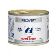 Ração Royal Canin Veterinary Recovery Cães e Gatos 195g