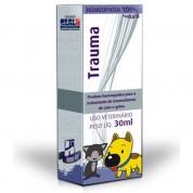 Homeopet Tratamento da Dor Trauma 30 ml