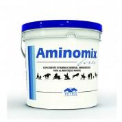 Suplemento Aminomix Forte 2,5kg