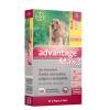 Advantage Max 3 G Cães de 10kg a 25kg Combo Leve 3 Pague 2