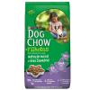 Ração Dog Chow Filhotes Raças Pequenas 15kg