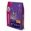 Ração Eukanuba Cães Filhotes Raças Médias 7,5kg