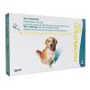 Revolution 12% Cães de 20 a 40kg - Caixa com 3 Unidades