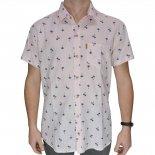 Camisa Drazzo Litoral 330273