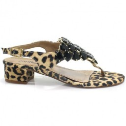 Sandalia Zariff Shoes 301011