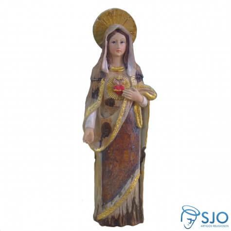 Imagem de Resina Sagrado Coração de Maria - 30 cm