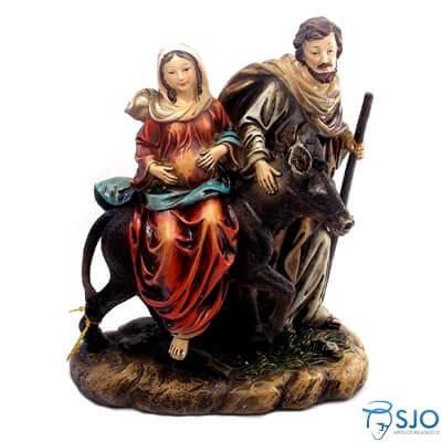 Imagem de Resina Nossa Senhora do Desterro Grávida - 20 cm