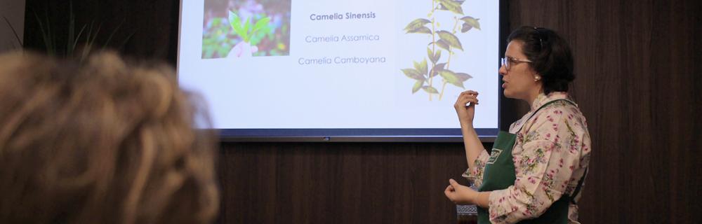Introdução ao mundo dos chás: conheça o curso com a Tea Sommelier Daniela Reis, da Tea Shop Morumbi