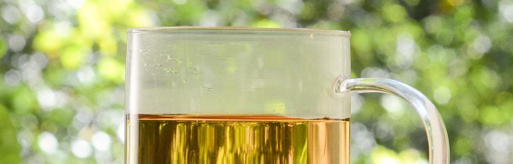 Para cada momento, uma infusão: vem conhecer as infusões que são sucesso na Tea Shop