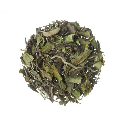 Chá Branco Pai Mu Tan - Tea Shop