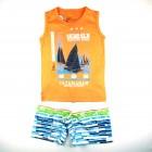 Conjunto Camiseta Regata e Bermuda Passagem Secreta - 034139