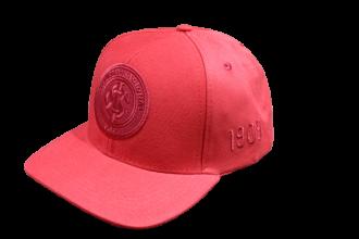 Imagem - Boné Aba Curva Logo Alto Relevo Bordado Internacional  cód: INT339