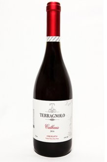 Imagem - Terragnolo Vinho Merlot Calhaus 750ml - TR010