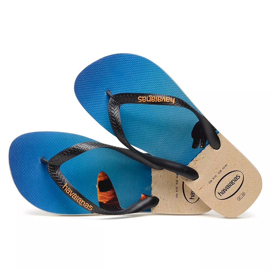 e583fa400e Calçados - Havaianas - Masculino - Tamanho 39