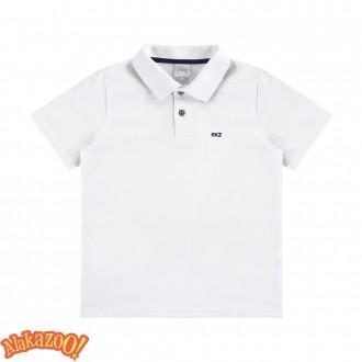 Imagem - (00147) Camiseta Polo Masculino Infantil - Alakazoo ref: 00147